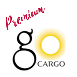Freight Forwarder GO CARGO in Doha